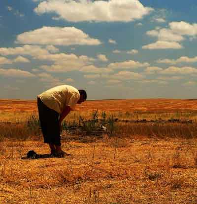 Islamic metal detectorists demand that prayer mats are supplied on publicdigs.